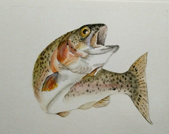 Rainbow Trout Watercolor Painting / Trout Wall Art / Original Watercolor Painting / Fish Painting