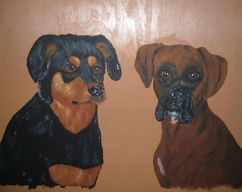 Rottweiler and Boxer Dog portrait