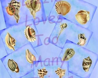 Seashells on Blue digital paper for scrapbooks, junk journals, collages, etc...