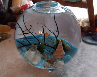 Marimo Moss Ball Terrarium // Moss Ball Aquarium // Desk Top Terrarium