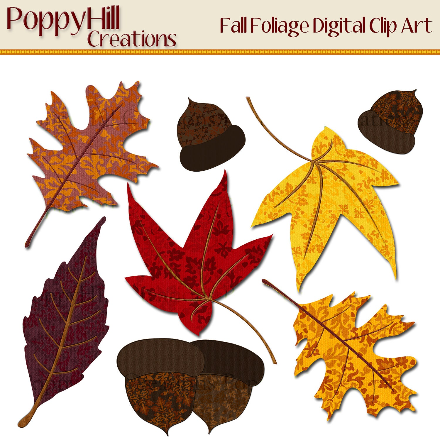 This is a graphic of Soft Free Printable Fall Leaves