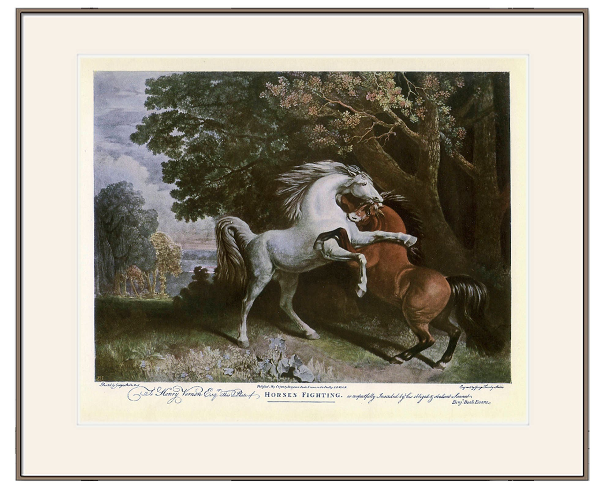 Horses fighting vintage sporting print from antique horse zoom jeuxipadfo Gallery