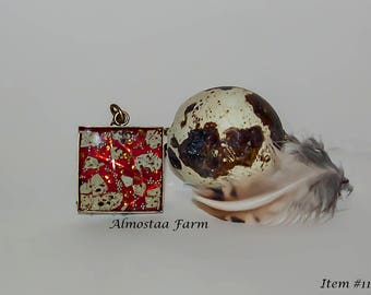 Quail Eggshell Necklace #110