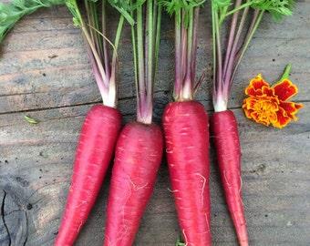 Cosmic Purple Heirloom Carrot Seeds Grown To Organic Standards