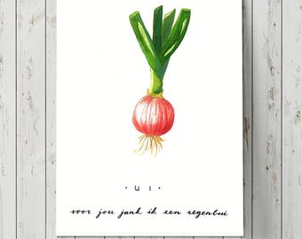 Herb illustration - ONION