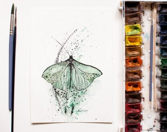 Green Butterfly Original Watercolor Ink Painting