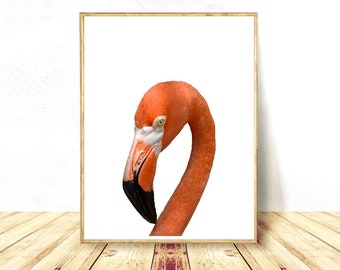 Flamingo Print, Flamingo Printables, Flamingo Art Prints, Flamingo Posters, Flamingo Wall Art, Bird Poster, Digital Download, Flamingo Art