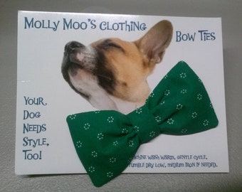 Small Green Collar Bow Tie