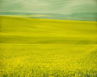 The fields in spring, landscape art print, nature photography, spring moments, whimsical fine art, 10x8