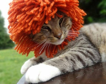 Lion Mane Pattern, Lions Mane Crochet Pattern, Lions Mane Cat Hat Pattern, Lions Mane for Cats Pattern, Lion Cat Hat Pattern