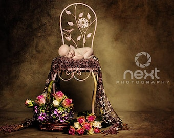 Newborn baby vintage digital backdrop with braun lace
