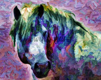 Colorful Art of White Horse of the Camargue in Provence, France!  20316 Horse Wall Art Modern Art Horse Painting Colorful Horse Art