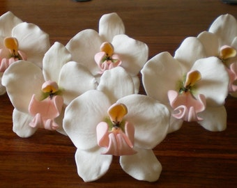 Set of 6 orchids Choose from 6 moth, cymbidium or cattelyea. Any colour