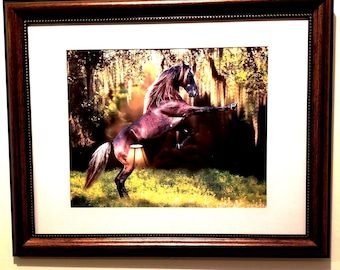 The wild Horse
