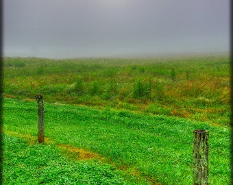 VERTICAL -- CLICK To See.  Foggy Dawn E245.  Smoky Mountains, Dawn, Fog, Sun, Spring, Green, Vertical, Portrait Format, Fence