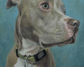 Pet Painting, Dog portrait, Pet portrait, Dog Art - Pit Bull, oil painting on stretched canvas. ***Lowest price is 50% DEPOSIT price***
