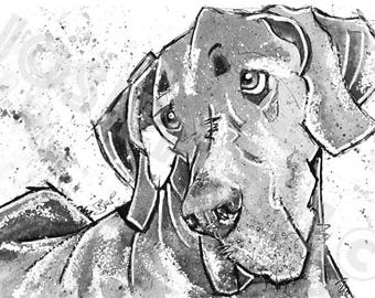 Black & White GREAT DANE PRINT from Original Watercolour Dog Painting by Josie P.