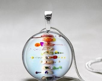 Sushi Necklace - sushi jewelry - Gift for Sushi Lover -Sushi Pendant