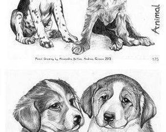 Card - Card in aid of Animal Rescue (Dogs)