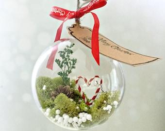 Christmas terrarium ornament-  christmas ornament-moss terrarium ornament- moss ornament holiday decor stocking stuffer