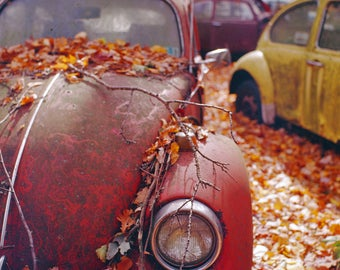 Print - Abandoned VW Front