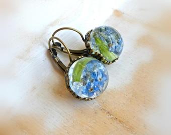 Forget me not earrings Blue floral terrarium earrings  Round dangle earrings /Pressed flower jewelry / Garden lover gift idea for women