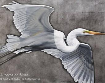 Contemporary Egret Painting Reproduction • AIRBORNE on SILVER • Tropical Bird • White Bird Art • Egret Art Print • Great White Egret
