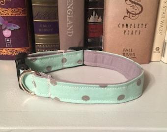 Seafoam Green and Grey Polka Dot Dog Pet Collar