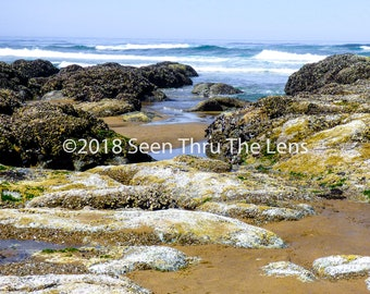 Rocky Beach - Photographic Print