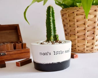 "Meaningful Mother's day gift, Succulent, Cactus, Planter with quote ""mom's little seed"", mom to be earth mum, vase, pot, fast ship uk seller"