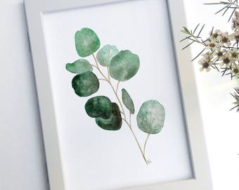 Silver Dollar Gum, Eucalyptus Leaves, Digital Art Print, Instant Download, Modern Australiana, Wall Decor, Print At Home Digital Watercolor