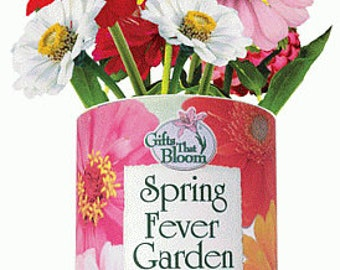 Spring Fever Garden