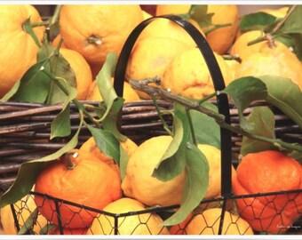 Plastic TABLE SET: citrus fruit basket
