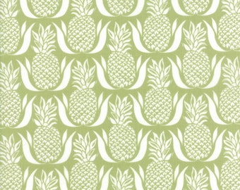 Bungalow cotton fabric by Kate Spain for Moda fabric 27292 13