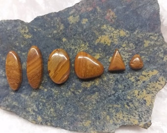 Brown Onyx Cabochon Set/ Set of 6/ oval/ triangle/ freeform