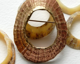 Pothmeor Large Limpet brooch