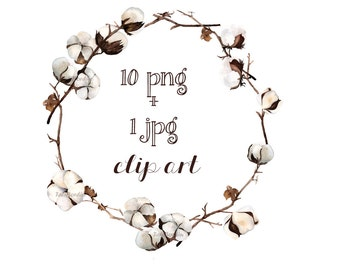 Watercolor Cotton Clip Art + Wreath  10 PNG + 1 JPG