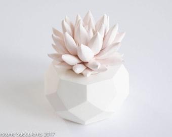 PEACH Pastel Succulent Sculpture Art Object Geometric Pr, Desktop Accessory, Modern Minimalist Home Office Decor Succulent Gift