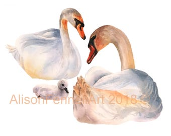 Watercolor Swan Print, bird art prints, new baby gift, animal family