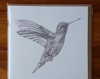 Hummingbird Greetings card, Animal card, Birthday card