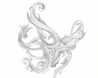 "Octopus Drawing - Scrollwork Cephalopod 2  - Original 7""x7"" Delicate Black and White Linework Drawing - Free Shipping"