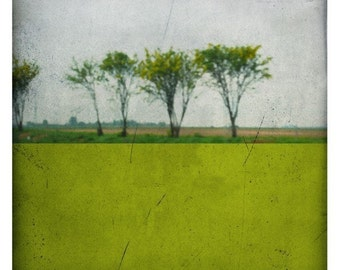 Pole acide (Landscape Photography - Fine Art Print - Country Road - Painting - Color Block - Green)