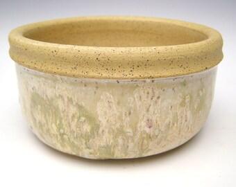 handmade stoneware planter Pottery Planter pot  ceramic succulent Planter and cactus planter herb plant pot  6 x 3  scp- 65