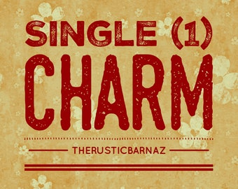 SINGLE CHARM (1) charm rusty rusted metal charm