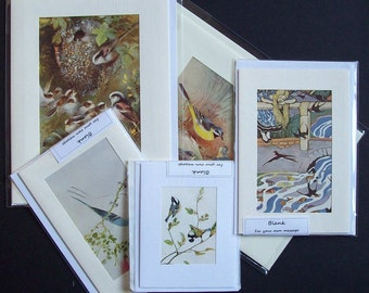 Five Handmade Bird  blank greetings or note cards (Set 17)