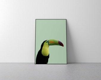 Toucan print, Toucan Poster, Tropical Bird, Toucan Wall Art, Tropical Wall Art, Bird Print, Tropical Decor, Toucan Printable , Toucan Art