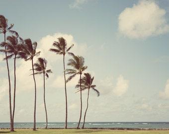 "Tropical Decor, Hawaii Wall Art Print, Beach Decor, Landscape Photography, Palm Print, Wall Decor, Travel Photography ""Tropicalia"""