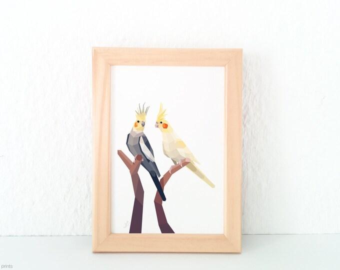 Cockatiel pair