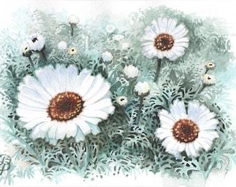 Marguerite blanche, aquarelle originale, peinture, livraison gratuite