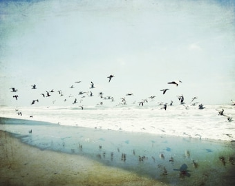 "Rustic beach print - ocean photography - California beach - seagulls birds in flight - ochre gray blue - coastal wall art ""Birds Reflected"""